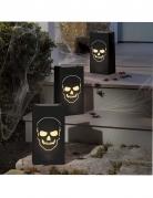 6 Lanternes en papier tête de mort Halloween