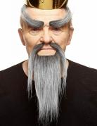 Kit moustaches chinoises grises adulte