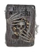 Livre sorcier avec toile d'araignées 30 X 20 cm