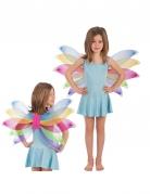 Ailes papillon multicolore fillle