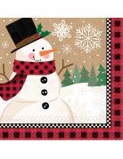 Vous aimerez aussi : 16 Serviettes en papier bonhomme de neige 33 x 33 cm