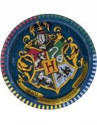 Vous aimerez aussi : 8 Petites assiettes en carton Harry Potter ™ 18 cm