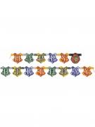 Vous aimerez aussi : Bannière happy birthday Harry Potter ™ 182 cm