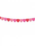 Vous aimerez aussi : Guirlande en papier coeurs Love you 4 m