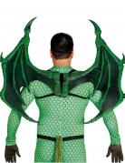 Ailes dragon luxe 100 X 80 cm
