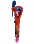 Ventilateur bonbons Ladybug ™ 20 cm