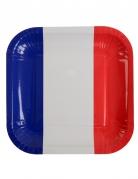 Vous aimerez aussi : 10 Assiettes carrées en carton France 23 x 23 cm