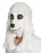 Masque latex caniche blanc adulte