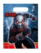 Vous aimerez aussi : 6 Sacs cadeaux Ant-Man™ 23 x 16,5 cm