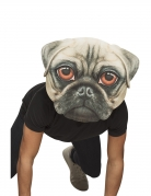 Masque géant chien adulte