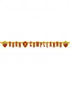 Vous aimerez aussi : Guirlande en carton Buon compleanno Roma™ 2 m 94 x 20 cm