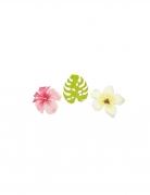 Vous aimerez aussi : 9 Confettis en bois fleurs et feuilles tropicales 3,8 cm