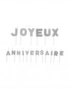Bougies sur pique joyeux anniversaire argentées pailletées 1,6 x 1,2 cm et 1,8 x 2,2 cm