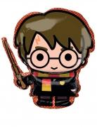Petit ballon aluminium Harry Potter™ 25 cm