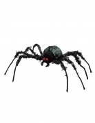 Araignée géante 43 x 46 cm