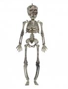 Vous aimerez aussi : Décoration à suspendre squelette 30 cm