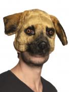 Masque chien peluche adulte