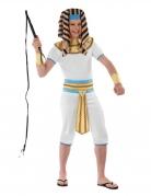 Déguisement roi d'Egypte adolescent