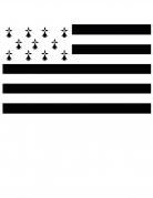 Drapeau supporter Bretagne 150 x 90 cm