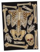 Vous aimerez aussi : Stickers pour fenêtre squelette 30 x 40 cm