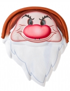 Masque Grincheux™ adulte