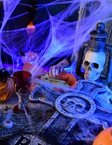 Toile d'araignée blanche avec araignées 100 g Halloween