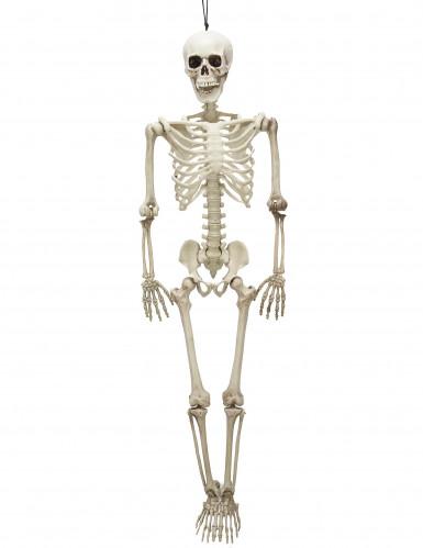 Squelette positionnable 90 cm Halloween