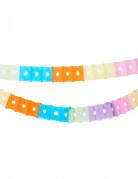 Vous aimerez aussi : Guirlande en papier multicolore 6 m