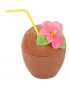 Vous aimerez aussi : Noix de coco Hawaï