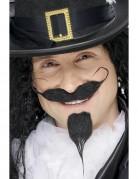Moustache et barbe de chevalier adulte
