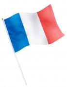 Vous aimerez aussi : Drapeau de supporter France
