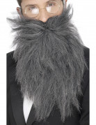 Vous aimerez aussi : Barbe longue grise homme