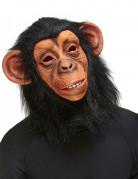 Masque de singe adulte