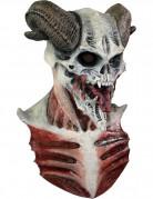 Vous aimerez aussi : Masque squelette diabolique Adulte Halloween