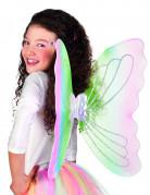 Ailes papillon multicolore