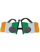 Vous aimerez aussi : Lunettes drapeau de l'Irlande adulte