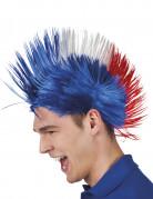 Vous aimerez aussi : Perruque punk France