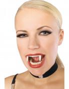 Dentier de vampire phosphorescent
