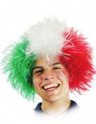 Vous aimerez aussi : Perruque Italie adulte
