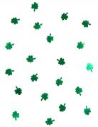 Vous aimerez aussi : Confettis trèfles St Patrick 28 grammes