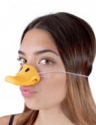 Vous aimerez aussi : Nez canard adulte