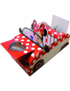 Vous aimerez aussi : Boite carton Minnie™