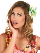 Vous aimerez aussi : Barrette fleur blanche Hawaï