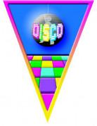 Vous aimerez aussi : Guirlande fanions disco 5 mètres