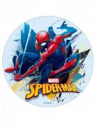 Disque en sucre Spiderman™ 16 cm