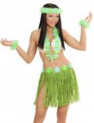Vous aimerez aussi : Kit hawaïen bleu et vert adulte
