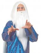 Vous aimerez aussi : Perruque sorcier avec barbe homme