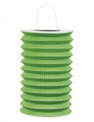 Vous aimerez aussi : Lampion en papier vert