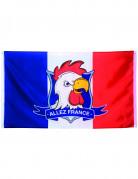 Vous aimerez aussi : Drapeau supporter Allez France 90 X 150 cm