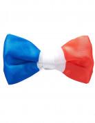 Noeud papillon tricolore France